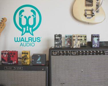 Hal Leonard Walrus Audio