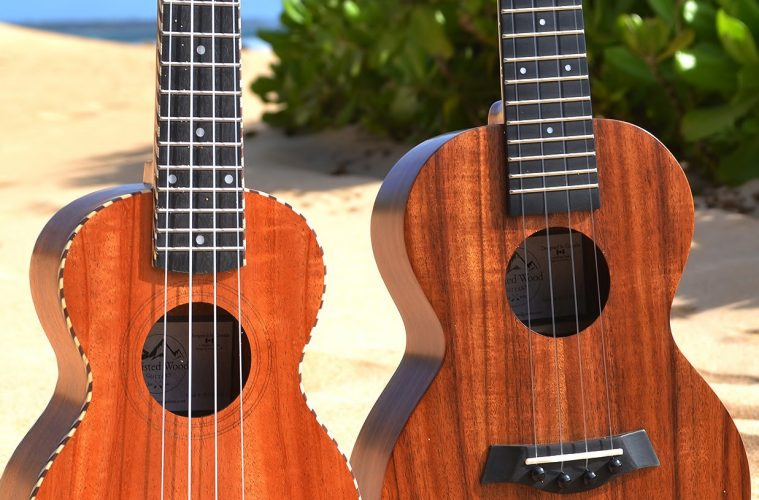 OMG Music, Twisted Wood Ukuleles